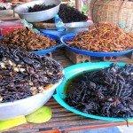 Asiaplus-Voyages-Cambodge-Siem-Reap-StreetFoodTour