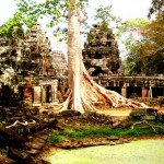 Cambodge-Siem-Reap-temple-Angkor
