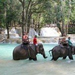 Asiaplus-Voyages-Vietnam-Laos-balade-a-dos-delephant
