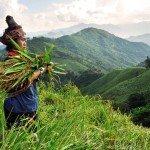 Asiaplus-Voyages-Vietnam-Laos