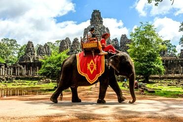 Cambodge-Siem-Reap-temple-Angkor-Bayon-balade-a-elephant2