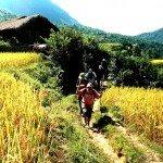 Asiaplus-Voyages-Randonnée Ha Giang