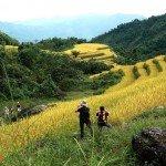 Asiaplus-Voyages-Randonnée à Ha Giang