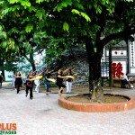 Asiaplus-Voyages-Hanoi-lac-Hoan-Kiem-Taichi