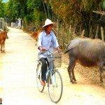 Asiaplus-Voyages-Vietnam-Mai-Chau2