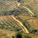 Asiaplus-Voyages-Vietnam-Sa-Pa54