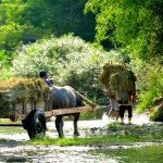 Puluong_retreat_Vietnam_landscape11-min