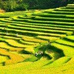 Puluong_retreat_Vietnam_landscape18-min