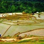 Puluong_retreat_Vietnam_landscape19-min