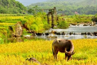Puluong_retreat_Vietnam_landscape6-min