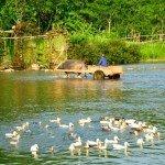 Puluong_retreat_Vietnam_landscape9-min