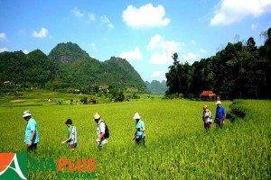 Asiaplus - Voyages - Vietnam - Vallée Mai Chau