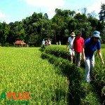 Voyages-Vietnam-Randonnée à Mai Chau-9