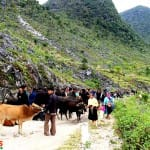 Asiaplus-Voyages-Vietnam-Ha-Giang44