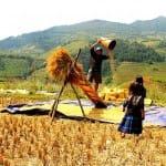 Asiaplus-Voyages-Vietnam-ethnies-minoritaires122