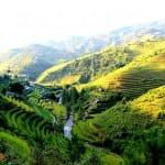 Asiaplus-Voyages-Vietnam-rizieres-Tule-Mucangchai41