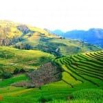 Asiaplus-Voyages-Vietnam-rizieres-Tule-Mucangchai62
