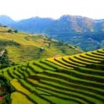 Asiaplus-Voyages-Vietnam-rizieres-Tule-Mucangchai66