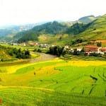 Asiaplus-Voyages-Vietnam-rizieres-Tule-Mucangchai73
