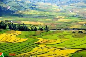 Asiaplus-Voyages-Vietnam-rizieres-Tule-Mucangchai9