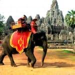 Cambodge-Siem-Reap-temple-Angkor-Bayon-balade-a-elephant-min