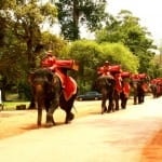 Cambodge-Siem-Reap-temple-Angkor-Thom2-min