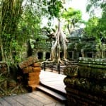 Cambodge-Siem-Reap-temple-Angkor5-min