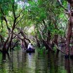 Cambodge-village-flottant-foret-min