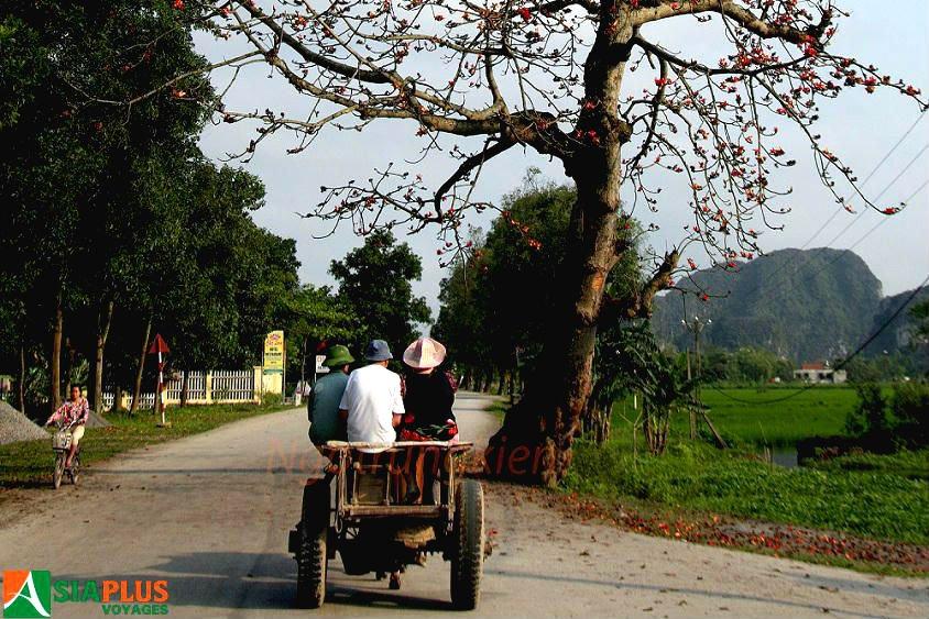 Asiaplus-Voyages-Vietnam-Ninh-Binh-Tam Coc - Bich Dong